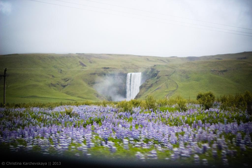 Исландия [6]: День 1, часть 2. Гейзеры и водопады. Гульфосс.
