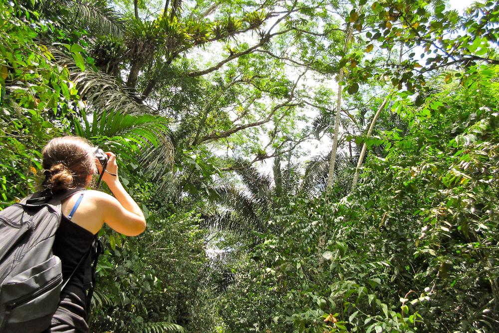 Панама [3]: Джунгли и Панамский канал