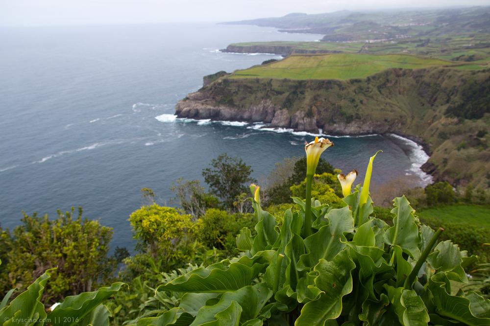 сао мигель азоры азорские острова запад