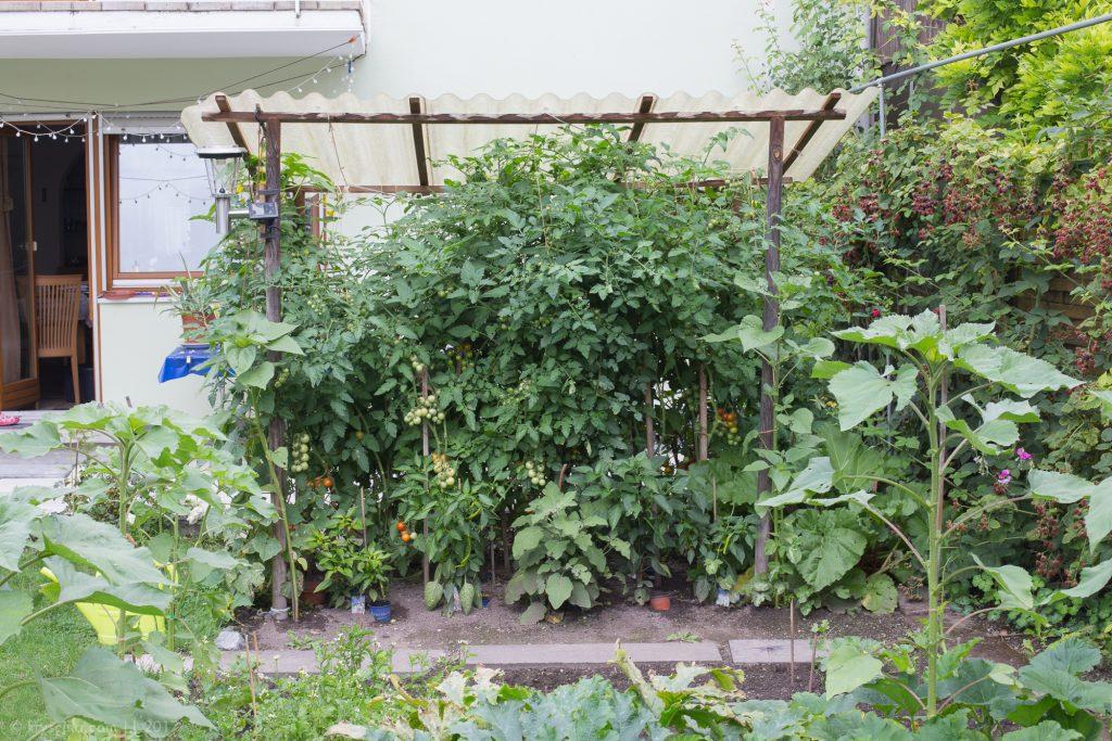 огород в Германии