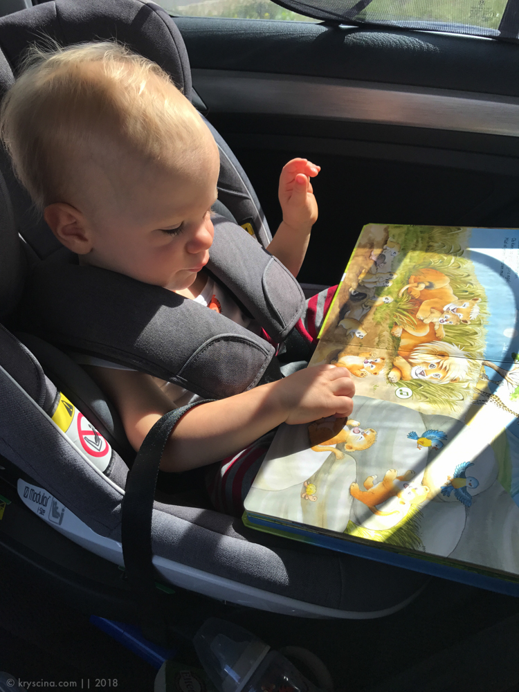 путешествие с ребенком до года